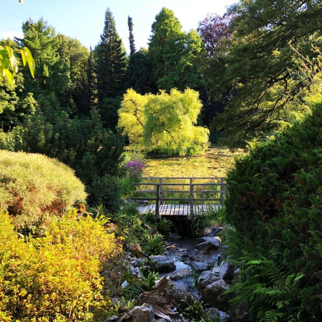 Wasser zur gartengestaltung gartentechnik in wiesbaden for Gartengestaltung wasser